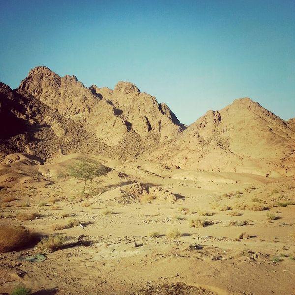 On My Way To Sharm El-Sheikh Egypt