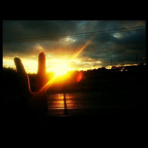 Love Life Sun Photography