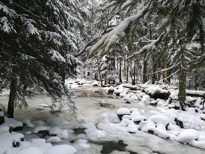 Snow , Winter, Karkonosze, Karpacz