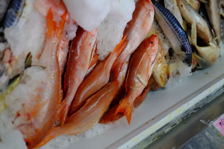 High angle view of fish on ice for sale at market stall