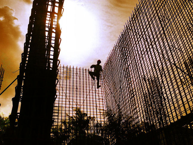 Working.. Man At Work Safety Climbing Low Angle View Silhouette Light And Shadow Taking Photos MAN ONLY Tree Nature Imaginative First Eyem Photo Man Work Sky Outdoors INDONESIA
