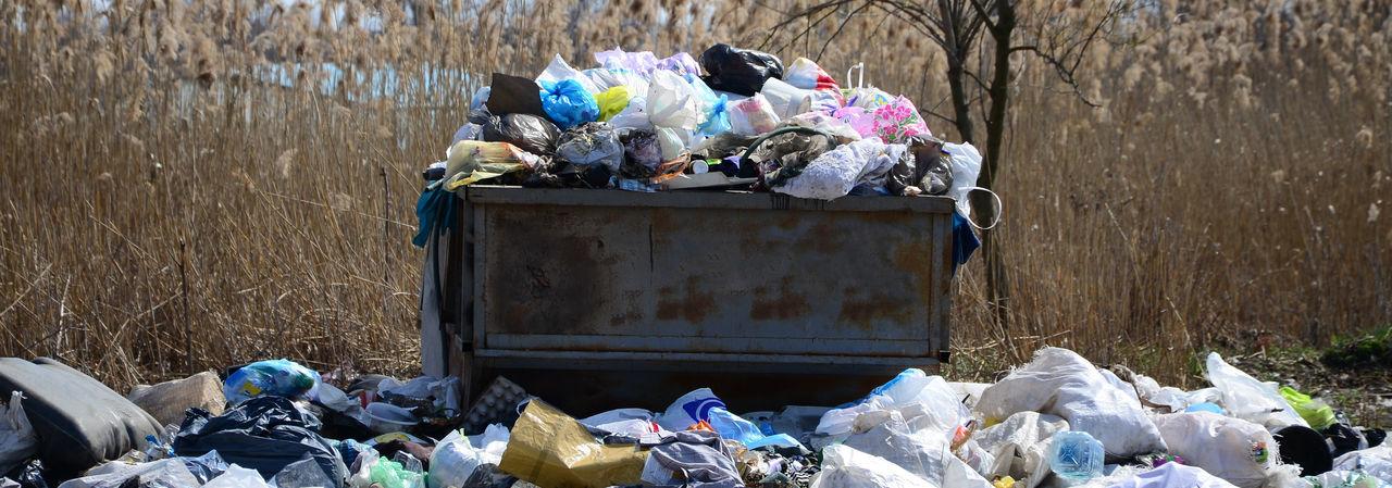 Garbage bin against dried plants