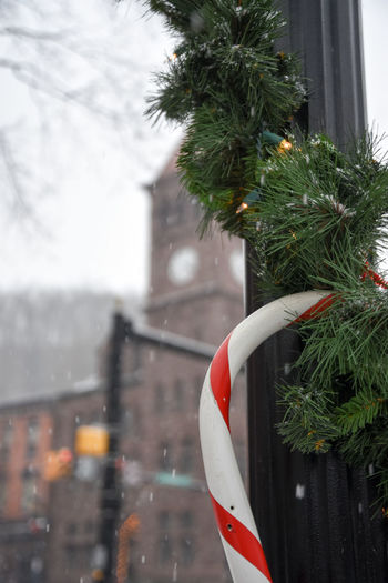 Cane Candy Cane Christmas Christmas Decoration Christmas Decorations Close-up Cold Temperature Colors Day Focus On Foreground Garlinton Light Pole Light Post Mountain No People Outdoor Outdoors Outside Snow Snowing Tourism Town Train Station Tranquility Valley Village