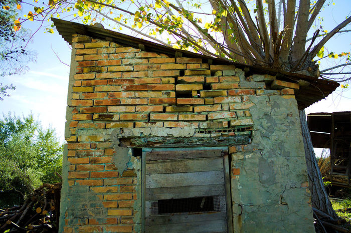 Rural and ruins The Week On EyeEm Abandoned Architecture Brick Wall Building Exterior Built Structure Day Growth Low Angle View Nature No People Old Outdoors Sky Tree Weathered