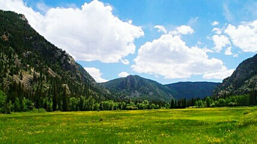 Rocky Mountain Valley. Forest Forest Photography Mountains Mountains And Sky Mountain_collection Mountains And Valleys Mountains Landscape Mountains And Meadow Mountains, Meadows And Forest Sunny Day 🌞 Sunny Summer Days