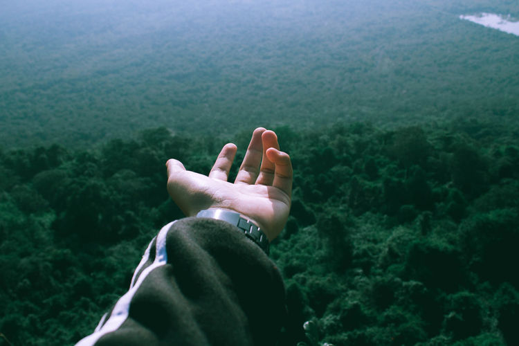 Cropped hand of man gesturing against forest