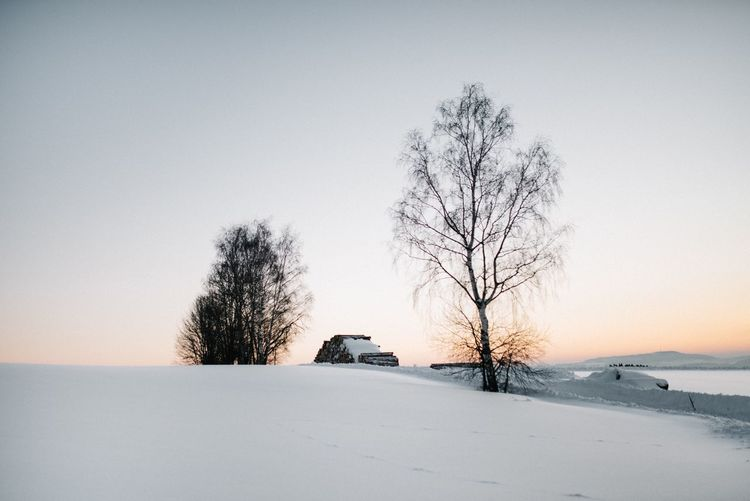 Winter wonderland Snowscape Sunrise Beautiful Nature EyeEm Best Shots - Nature EyeEmBestPics EyeEm Best Edits EyeEm Best Shots Landscape Trunk Tree Cold EyeEm Selects Tree Snow Winter Cold Temperature Plant Transportation Nature Sunset Sky No People Environment Land Tranquility Outdoors My Best Photo