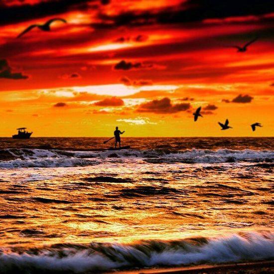 Enjoy each day as if it were your last! The Gulf of Mexico FL.🏄 ------------------------------------------------------------------- Igpowerclub Igs_america Igs_europe IgPodium ig_all_americas theworldshotz tv_sea igs_world waycoolshots dream_image cool_sunshotz ig_mood greatshotz ig_dynamic natureaddictsun igs_africa sky_sultans thelove_of_sunsets worldclassshots wow_america worldclasssky talent_alert incredible_shot lazyshutters global_hotshotz jj_skylove water_perfection igs_oceania igs_asia srs_sunshine