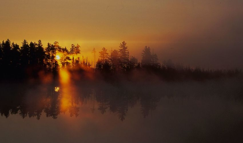 Gods Gold[a:sun Rising Through The TreesiLandscapeuSerene Still Watersape serene Still Waters