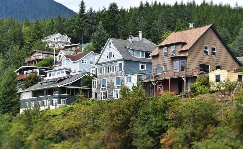 A handful of houses elevated above the rest Cityscape Nikon Travel Architecture Beauty In Nature Building Building Exterior Built Structure Day Forest Green Color Home House Land Mountain Nature No People Outdoors Tree