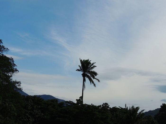 Jardim Zoológico Rio De Janeiro
