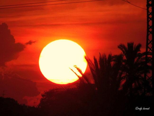 Sunset in Muchavista EyeEm Nature Lover EyeEm Best Shots Landscape Sunset