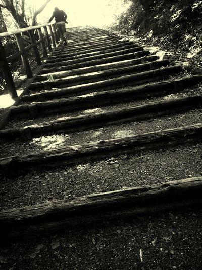 Stairways at Meganebashi Natural Way Monochrome