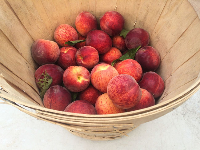#EyeEmNewHere Farmers Market Fresh Cut New York Summer Fruits Beauty Delicate First Eyeem Photo Food Food And Drink Freshness Fruit Healthy Eating Organic Peaches Summer Upstate New York