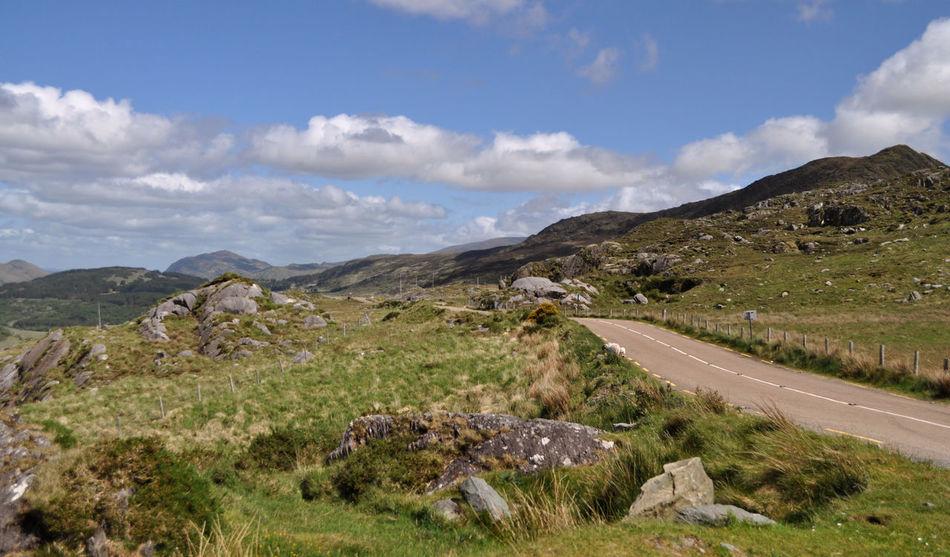 Driving Ireland Killarney  Killarney National Park Roadtrippin' Adventure Killarneynationalpark Roadtrip