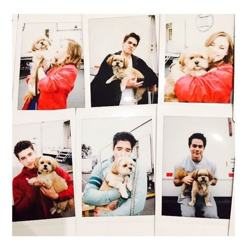 Amazing Excited Obsession Teen Wolf Holland Roden Cody Christian Arden Cho Dylan O'Brien  Dylan Sprayberry Beautiful