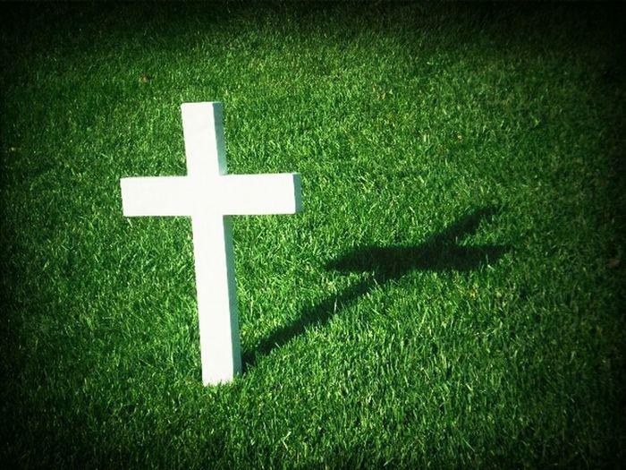 Shadow Cross Rip
