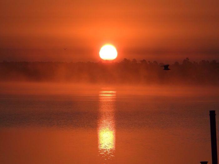 Sunrise Orange Color Birds In Flight Misty Morning Foggy Sun Reflection On Water Northern Minnesota Lake Bemidji Bemidji