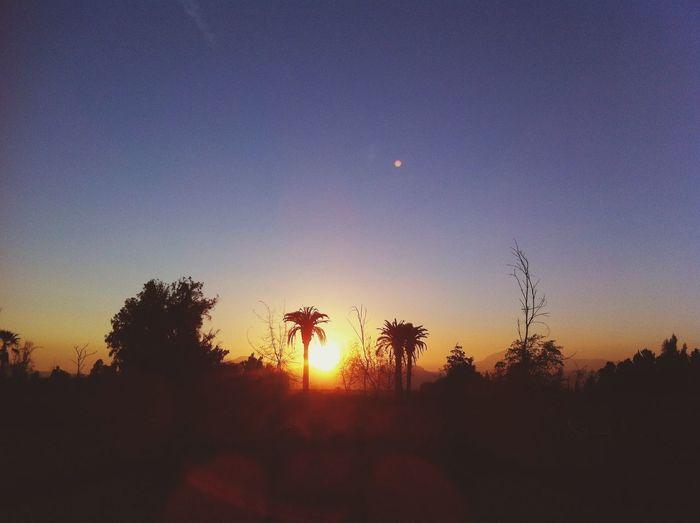 Nice sunset :D