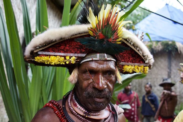 EyeEmNewHere Huli Wig Man Huli Village Mount Hagen Festival Papua New Guinea Tribal Wig Man Culture Portrait Real People Tribal Art Tribal Culture