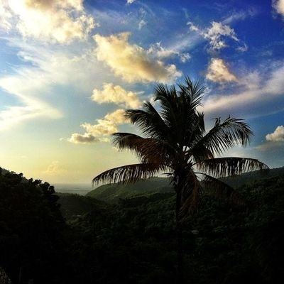 IPhoneography Islandlivity IPhone Silhouette Skysnappers Grenada Greenz View