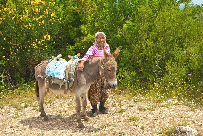 Old Women Turkey Danky Nature Enjoying Life Summer ☀ Rural Sunny Day Untold Stories