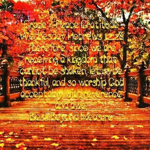 Grace & Peace Gratitude Wednesday