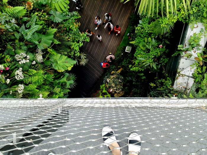 Taking Photos Singapore Cloud Forest Dome Gardens By The Bay Human Leg Footwear