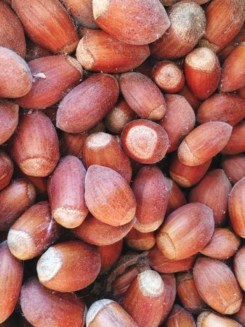 Hazelnut Hazelnuts Nuts Hazel Nuts Food Raw Raw Food Unprocessed Unprocessed Whole Foods Natural