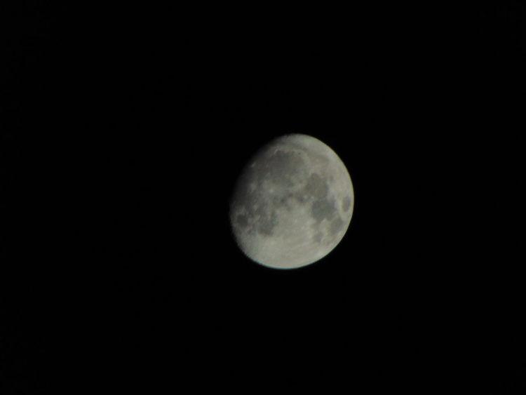 last weeks moons Full Moon Moon Night Sky, Moon, Full Moon,, Nature Cornwall Uk Half Moon Lunar Lunar Landscape Moon Light Moon Surface Night