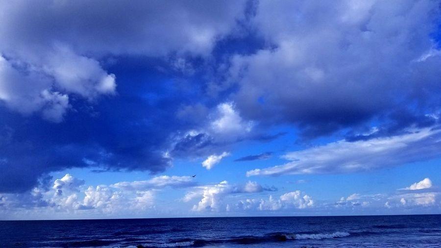 Waves Sky Bird Flight Bird Photography Blue Sky Beauty In Nature Hilton Head Island, SC Clouds Water Thunderstorm Storm Cloud Beach Blue Sky Horizon Over Water Cloud - Sky Seascape Ocean Wave Surf Storm Coastline