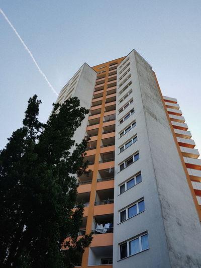 Vscocam VSCO Streetphotography Berlin Summer Lookingup City Tree Skyscraper Modern Sky Architecture Building Exterior Built Structure
