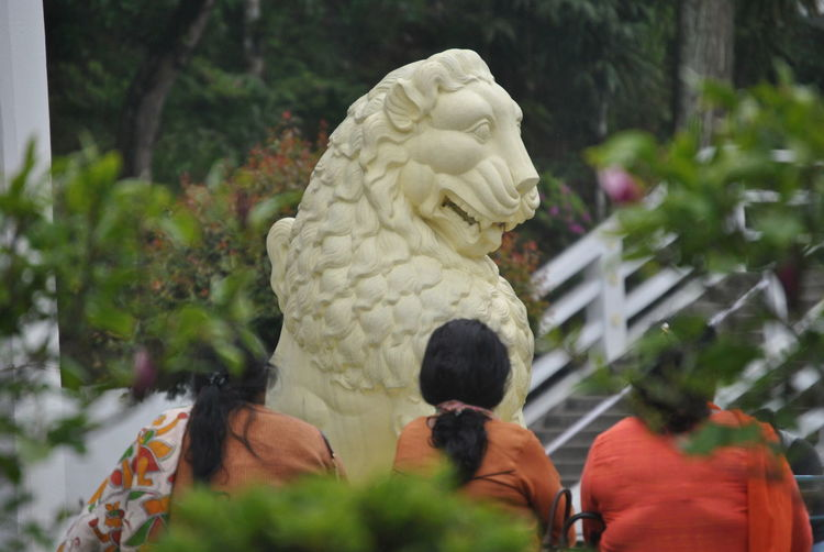 Lion Statue, Stone Lion, People Watching People And Places Yellow And Green