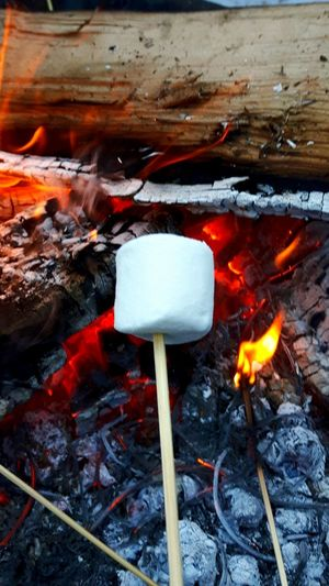 Heat - Temperature Outdoors Flame Burning Close-up no People Fire Marshmallow Quebec, Canada Quebec Province Magog Burning Flame