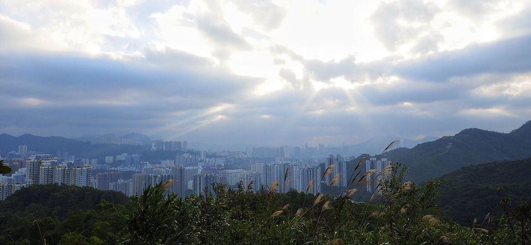 Adapted To The City HongKong Tsingma Bridge City Architecture God Sunrise