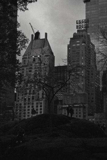 Central Park, 2018 Building Exterior Architecture Built Structure Building City Tree Nature Sky City Life Plant Residential District Outdoors Office Building Exterior Day People Incidental People Real People Skyscraper Silhouette Central Park New York Black And White City Park Moody 2018 In One Photograph