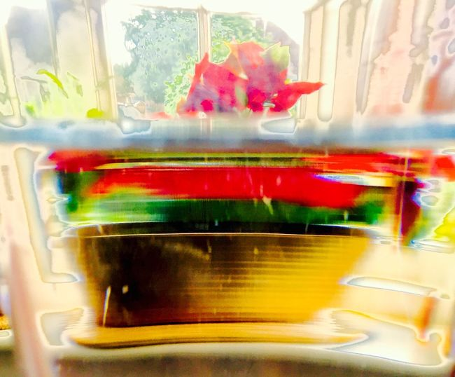 Floral/expressionism/Impression/abstraction/Adjusted Photograph/Extreme Colour Editing