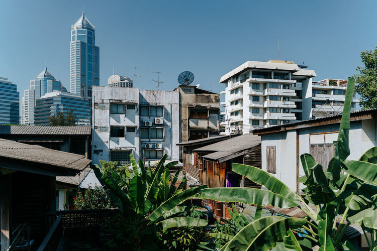 Traditional old houses and modern skyline in the background in Bangkok, Thailand Built Structure Architecture Building Exterior Building Sky Plant City Nature Residential District Day Office Building Exterior Growth No People Modern Skyscraper Clear Sky Leaf Tower Plant Part Tall - High Outdoors Apartment Skyline Apartment Buildings Poverty