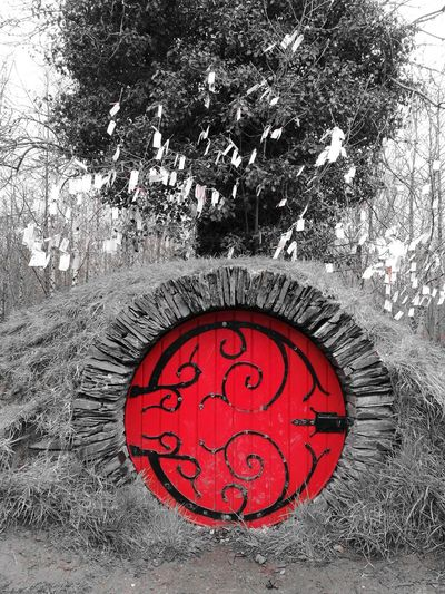 Fairytales & Dreams Fairy Door Oakfield Park Fairy Wish Tree Mound Red Circle Close-up Visual Creativity