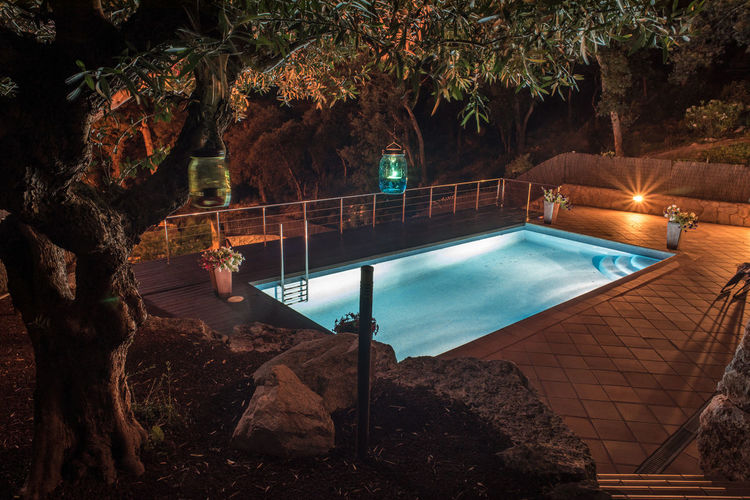 Swimming pool by trees at night