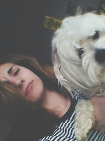 aww babe Dog Love Playing With The Animals Best Dog ♡ Weird Face Love My Dogs Are Cooler Than Your Kids