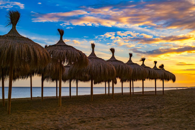 Straw beach umbrellas at sunset Beach Life Beach Photography Malaga Mediterranean  SPAIN Sunset Beach Animal Themes Beach Beach Sunset Beauty In Nature Cloud - Sky Day Domestic Animals Large Group Of Animals Mammal Nature No People Outdoors Scenics Sky Straw Umbrella Straw Umbrellas Sunset Sea Umbrelas Water