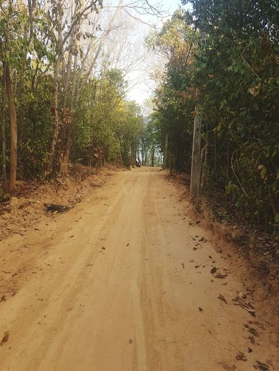 kohsamed🖤keepthestreetempty The Way Forward Mountain Road Treelined Shore Walkway Diminishing Perspective The Mobile Photographer - 2019 EyeEm Awards The Great Outdoors - 2019 EyeEm Awards
