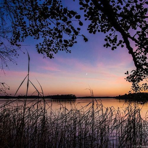 Night shot. Fotocatchersmember Ig_finland Exclusive_landscap Excellent_nature Ig_myshot Ig_dynamic Nature_brilliance Nature_obsession_landscapes 9vaga_skyandviews9 9vaga_world9 Photomagicworld Allnatureshots Loves_finland Ig_countryside Loves_landscape Picture_to_keep Astounding_shots Nature_wizards Landscape_captures Fotofanatics_nature_ Nature_perfection Instanaturefriends_ Fiftyshades_of_twilight Main_vision Heart_imprint ig_sharepoint bestnatureshots tree_brilliance worldbestgram nature_perfection