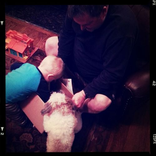 """Levi is super excited that """"papaw"""" is finally putting together his new tricycle and so is gracie..."""