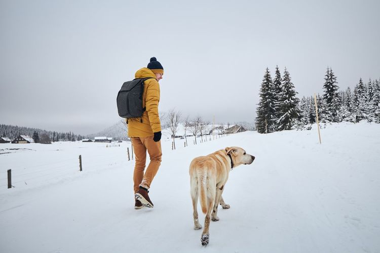 Rear view of man walking with dog on snow covered land