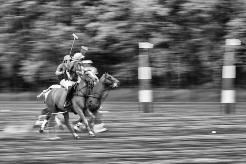 Blurred motion of horse riding