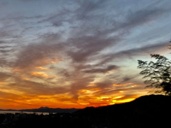 A Beautiful Sunset Sky. (181102-181126) Sky Cloud - Sky Sunset Beauty In Nature Silhouette Scenics - Nature Tranquil Scene Tranquility Environment Non-urban Scene Dramatic Sky Orange Color Plant Tree Nature Idyllic Outdoors No People
