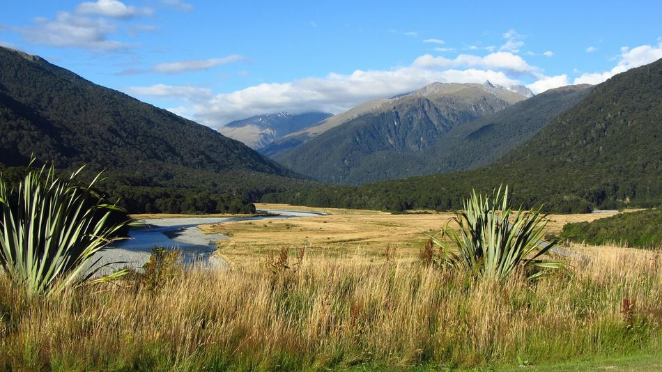 nz....anyplace, anytime. ... New Zealand New Zealand Scenery New Zealand Beauty New Zealand Landscape New Zealand Natural New Zealand Photography Beautiful Nature Beauty In Nature Beautiful View Valley Mountain Water Rural Scene Summer Sky Grass Landscape Uncultivated Valley Wilderness Wilderness Area Sight