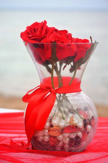 Beauty In Nature Bow Close-up Container Flower Flower Head Flowering Plant Focus On Foreground Freshness Glass - Material Indoors  Nature No People Plant Red Ribbon Ribbon - Sewing Item Still Life Table Tied Bow Transparent